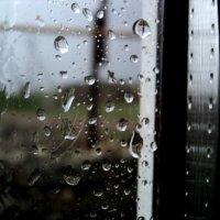 Майский дождь :: Дмитрий Тарарин