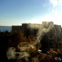 Осень :: Дмитрий Тарарин