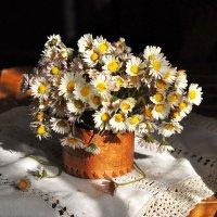 Букет из маленьких цветов :: Ольга Мальцева
