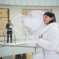 Свадебное фото, г. Черкассы :: Елена Ткаченко