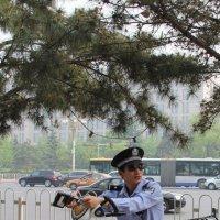 Пекинский полисмен :: Алексей Болдырев