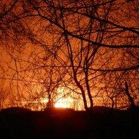 Огненный закат :: Yana Fizazi