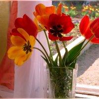 Увядающая красота :: galina tihonova