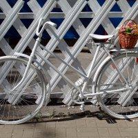 Велосипед :: Наталья Величко