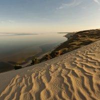 dunes :: linas būdavas