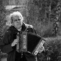 гармонист :: Кирилл Мешков