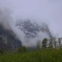 Альпы :: Виталий Ситников