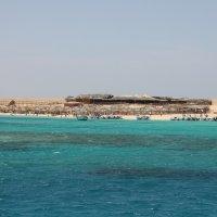 Остров в красном море :: Front Frontoff