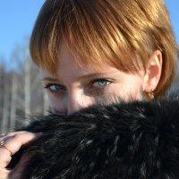 Зимняя красавица) :: Евгения Савельева