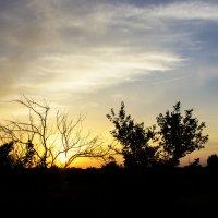 Закат перед бурей :: Yuriy F