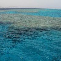 Море 1 :: Ирина Хромова