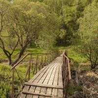 Заброшенный мост :: Алексей Содоль