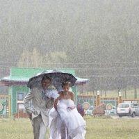 свадебные картинки_8 :: Павел Федоров