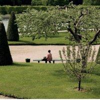 Отдых в парке :: Ольга Маркелова