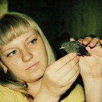 птичка :: Михаил Фенелонов