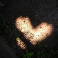 сердце :: Марина Галанина