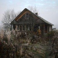 Утро в заброшенном доме :: Борис Устюжанин