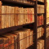 Библиотека монастыря :: Максим Болотов