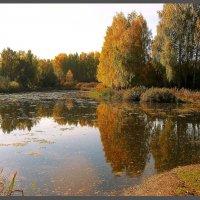 Осенняя тишина :: Olenka