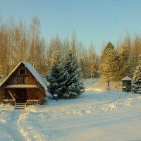 домик для гостей :: Михаил Шумилкин