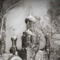 Церковь Покрова Пресвятой Богородицы в Черкизово :: Александр Шмалёв