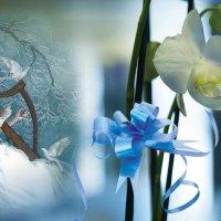 «Любовь я помню тёплой, нежной ...» :: vitalsi Зайцев