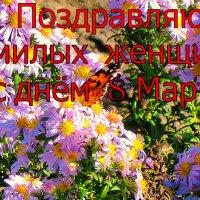 С  ПРАЗДНИКОМ  !!! :: Анатолий Малобродский