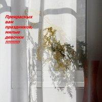 С  ПРАЗДНИКОМ !!! :: Валерия  Полещикова