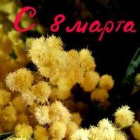 С празником дорогие женщины!!!! :: Ангелина Хасанова