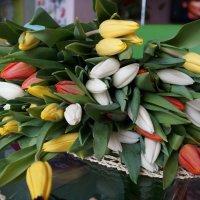 Тюльпановый рай! :: Валерия Брагина