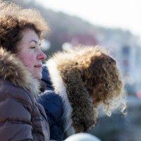 Первые весенние дни :: Юлия Горбатенко