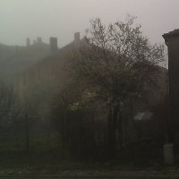 Туман :: Наталья Осипова(Копраненкова)