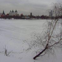 Такое 8 марта :: Андрей Лукьянов