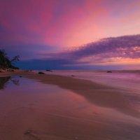 Purple evening :: Ruslan Bolgov