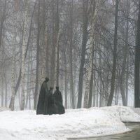 В моем городе утро :: Николай Спиридонов