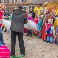 в Софрино... прощание с Зимой... :: Svetlana AS
