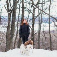 Зимняя фотосессия в лесу с хаски. :: Лилия Абзалова