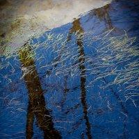 Отражение весны :: Дмитрий Шатров