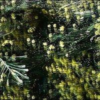 Рассыпавшаяся  мимоза.... :: Валерия  Полещикова