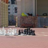 Шахматы на площади :: Вера Щукина