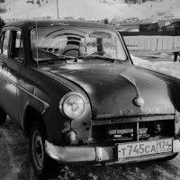 Берегись автомобиля :: Ольга