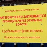Ворота только для жильцов... :: Нина Бутко