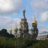 Санкт-Петербург :: Светлана Ларионова