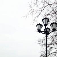 Зимний фонарь :: Сергей Погарельский