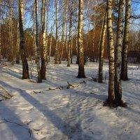Настоящий март :: Андрей Лукьянов