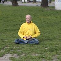 Медитация на городской клумбе-1. :: Руслан Грицунь