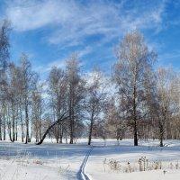 Март на Алтае :: Николай Мальцев