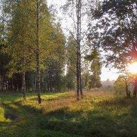 ...В последних лучах заходящего солнца :: Владимир Рязанов