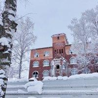 Зима в Молочном :: Валерий Талашов