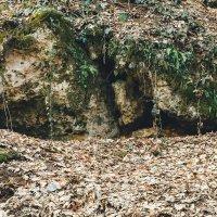 Пещера :: Иван Синковец